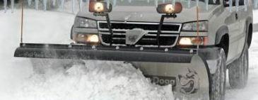 snowdogg_orig